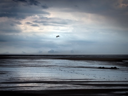heavy rain falling on a dark beach at low tide with dramatic storm clouds reflected on the wet sand with a smile line of footprints and a solitary seagull flying overhead