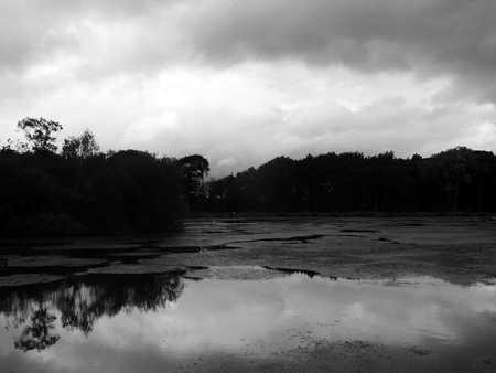 A mysterious dark lake with dramatic clouds reflected in the water and trees along the shore Stock Photo