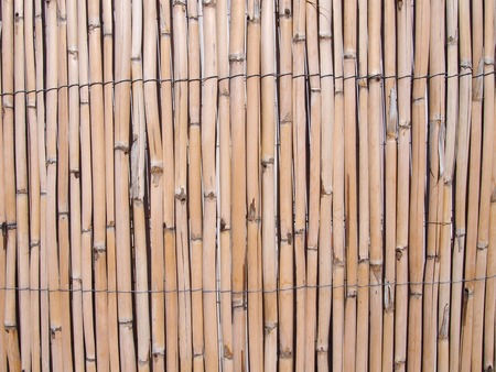full frame cracked faded old bamboo fence background