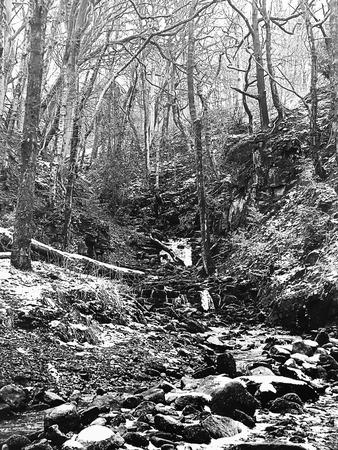 monochrome image of snow covered woodland with steep hillside stream running over rocks and boulders