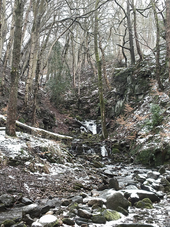 snow covered woodland with steep hillside stream running over rocks and boulders