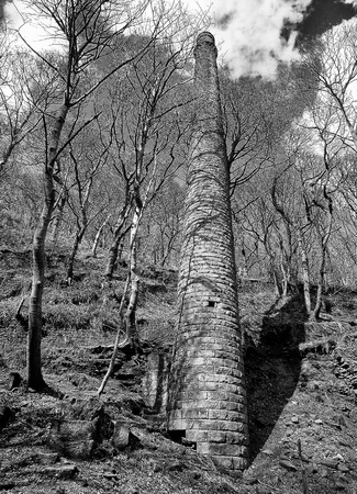 a monochrome image tall old ruined stone mill chimney surrounded by trees in the colden valley near hebden bridge
