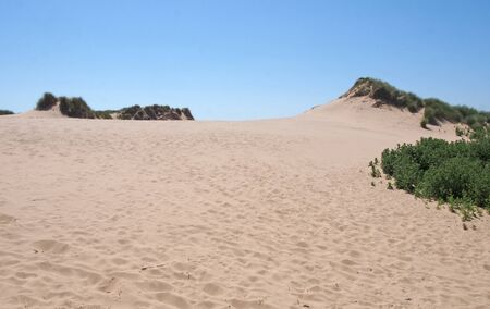 grass covered sand dunes with footprints against a blue summer sky on the merseyside coast between formby and freshfield