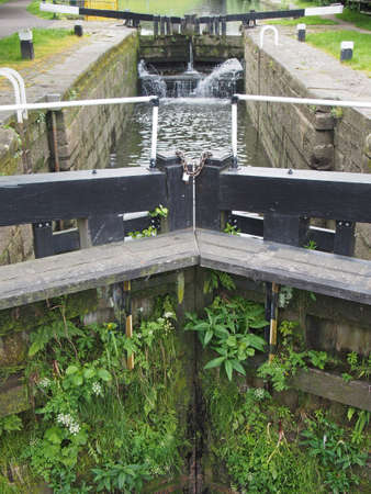 closed old black wooden lock gates with flowing water overgrown with vegetation on the rochdale canal in sowerby bridge west yorkshire