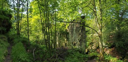 a panoramic view of a ruined ancient stone building surrounded by green forest trees and path in bright sunlight originally called staups mill in west yorkshire Reklamní fotografie