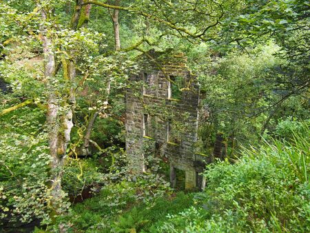 an old abandoned stone house in a forest overgrown with vegetation and hidden by trees and branches