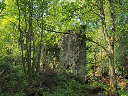 a ruined mill building surrounded by trees in green forest landscape in jumble hole clough in west yorkshire Reklamní fotografie