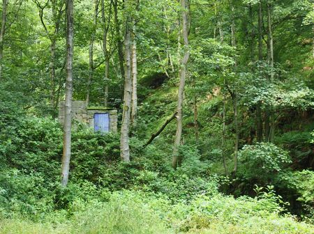 a tiny stone building with a blue door hidden in dense green forest with tall old trees