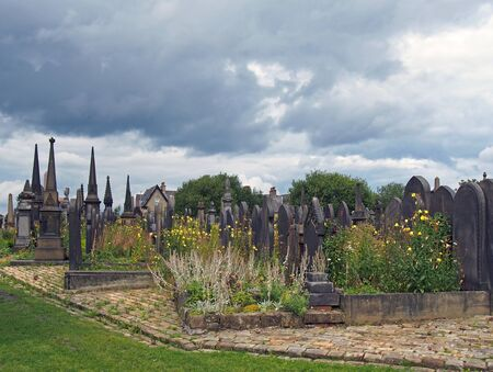 19th century gothic styled gravestones surrounded by wildflowers in the former lister cemetery in halifax now a public park