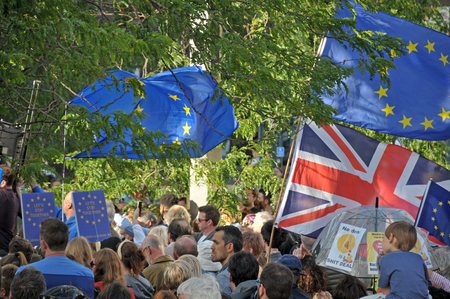 leeds, west yorkshire, united kingdom - 29 august 2019: a crowd of people at the leeds for europe anti brexit demonstration