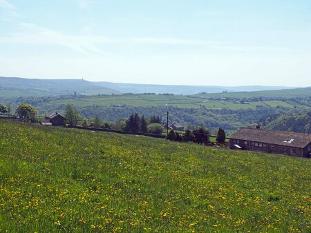 a view across a flower covered meadow in spring with hilly west yorkshire landscape with the village of heptonstall and pennines in the distance 版權商用圖片