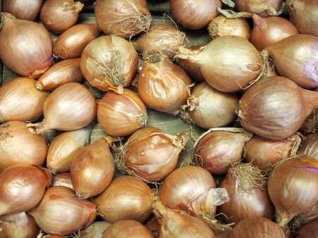 a close up of small organic misshapen brown onions for sale on a market Фото со стока
