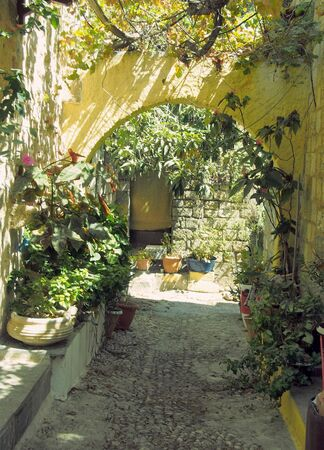 an ancient sunlit alleyway in rhodes town with yellow stone arches between walls and flowers growing in pot plants