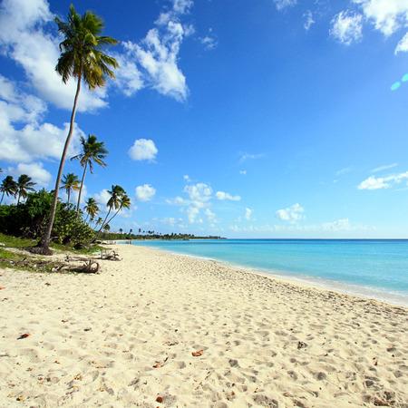 beach hut: Dominican Republic  Beach