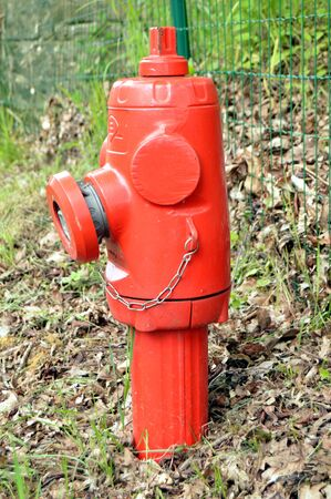 hydrant plug: Fire hydrant of red color in the campaign. Stock Photo