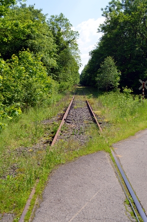 off track: Abandoned railroad track taking off through the forest. Stock Photo