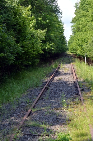 forest railroad: Abandoned railroad track taking off through the forest. Stock Photo