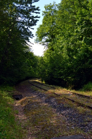 off track: Abandoned railroad track taking off through the forest