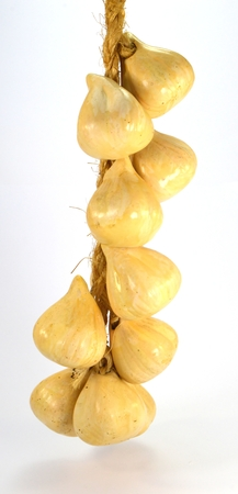 Garlic clove in a bunch on a rope on a white background