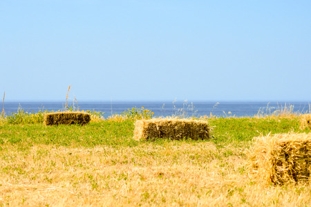 Straw bales in a field facing the sea in the south of Crete Stock Photo