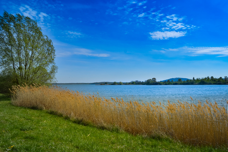 View of the lake of madine in the Meuse in France