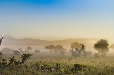 Rise of mist on the savanna and mountains of Tsavo West Park in Kenya