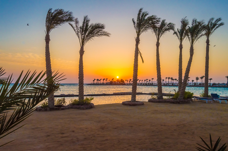 Sunrise on a peninsula of Hurghada across a row of palm trees on the Red Sea in Egypt