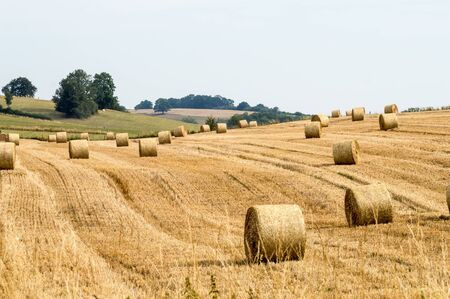 Fields of haystacks in the countryside of Gérouville near Virton in the province of Luxembourg in Belgium.Europe Stockfoto