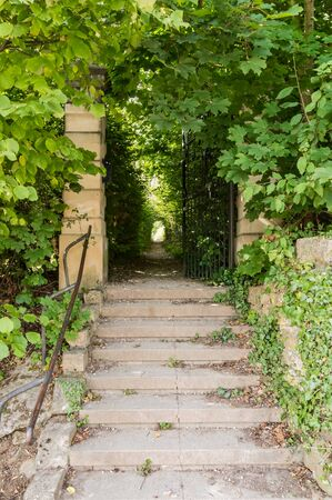 Stone staircase leading to a long, covered driveway in a green park