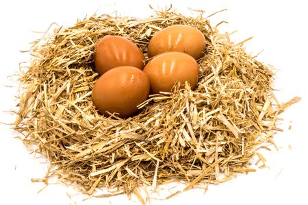 Eggs on a straw nest on a white background Banque d'images