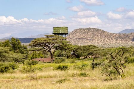 A green water storage tank on stilts in the savannah of Samburu park in Kenya Фото со стока