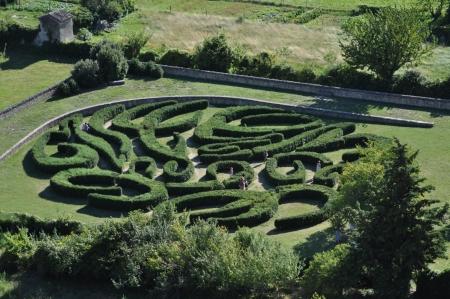 arbres: labyrinyhe