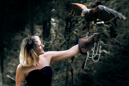 Wonderful harris hawk with a model