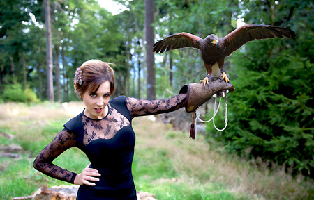 Wunderbare Harris Hawk mit einem Modell Standard-Bild - 48075072