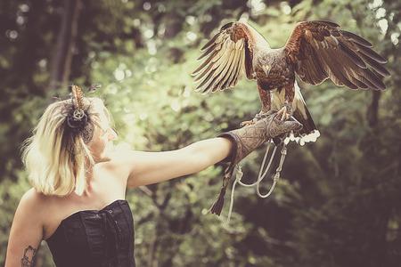 Wunderbare Harris Hawk mit einem Modell Standard-Bild - 48075086