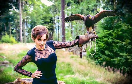 wildanimal: Wonderful harris hawk with a model