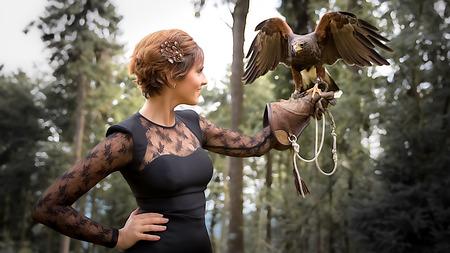 Wunderbare Harris Hawk mit einem Modell Standard-Bild - 48075179