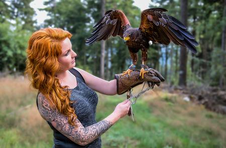 Wunderbare Harris Hawk mit einem Modell Standard-Bild - 48075180