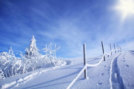 weihnachten: Winter5