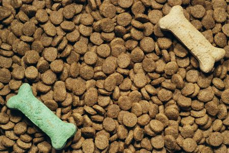 dry dog food and treats