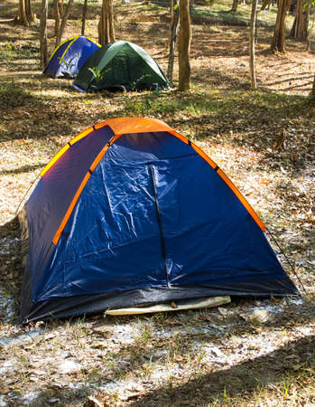 camping pitch: Blue tent on grass in jungle in mountain Stock Photo