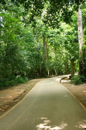 beautifu: pavement to the waterfall national park in thailand