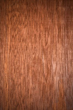 walnut tree: Pattern of the wood