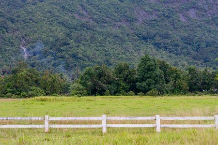 Fence Farm photo