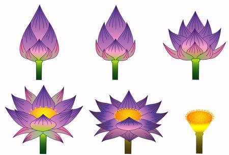 Thai purple lotus style Stock Vector - 7747263
