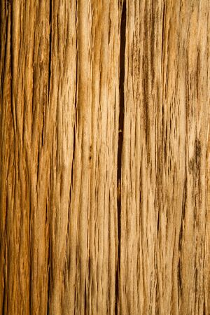 Old wood Stock Photo - 8845144