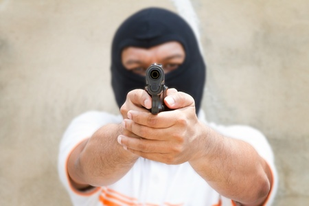 Bandit  photo