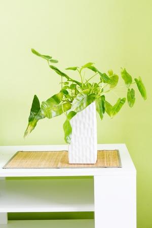 Ornamental vase  photo