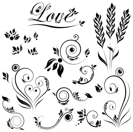 spring roll: the set of flower and leaves and love Illustration