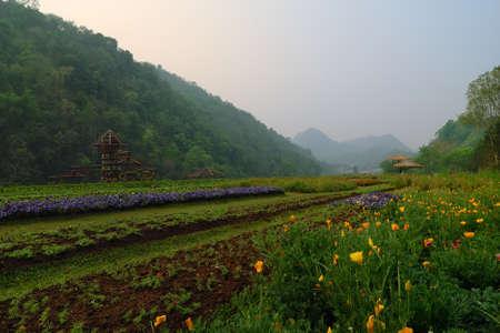 mountain Stock Photo - 9826155